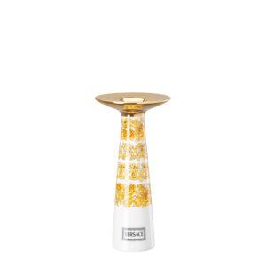 ive-farfor-ru-media-catalog-product-r-o-rosenthal-versace-medusa-rhapsody-14480-403670-26561-1000x1000