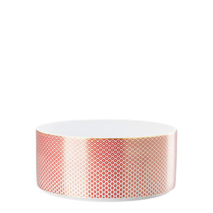 ive-farfor-ru-media-catalog-product-r-o-rosenthal-francis-carreau-rouge-10460-404310-13323-1000x1000